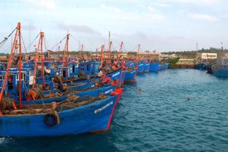 Điều chỉnh quy hoạch Khu bến cảng Cà Ná, Ninh Thuận