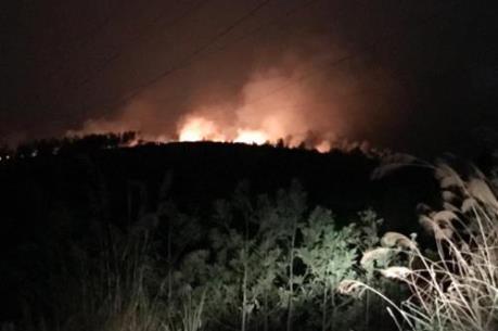 Tin mới: Cháy lớn thiêu rụi nhiều hecta rừng tại Quảng Ninh