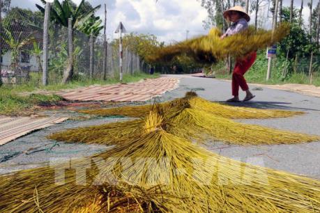 Thăm làng nghề chiếu Định Yên: Di sản văn hóa phi vật thể Quốc gia