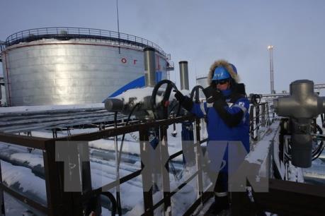 Giá dầu châu Á đảo chiều đi lên