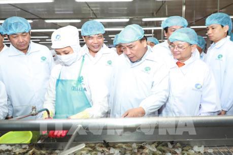 Thủ tướng thăm mô hình chế biến tôm tại Tập đoàn Thủy sản Minh Phú