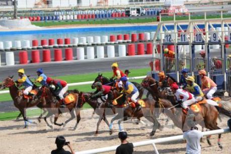 Giới hạn mức đặt cược đua ngựa, bóng đá quốc tế