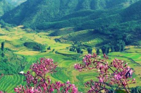 Những điểm du xuân hấp dẫn ở Điện Biên
