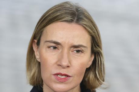 EU ưu tiên tìm tiếng nói chung trong hợp tác song phương với Mỹ