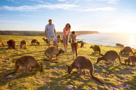 Ngành du lịch Australia làm ăn phát đạt