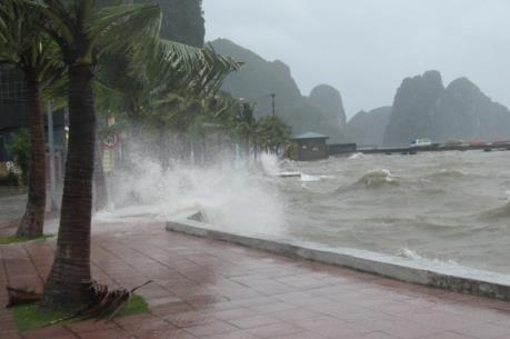 Dự báo thời tiết: Khu vực Bắc và giữa biển Đông có gió Đông Bắc giật cấp 9