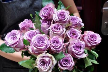 """Hoa hồng ngoại """"giá khủng"""" được """"săn lùng"""" dịp Valentine"""