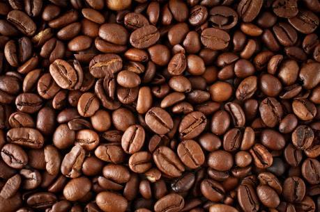 Dự báo giá cà phê tuần từ 13/2 - 18/2