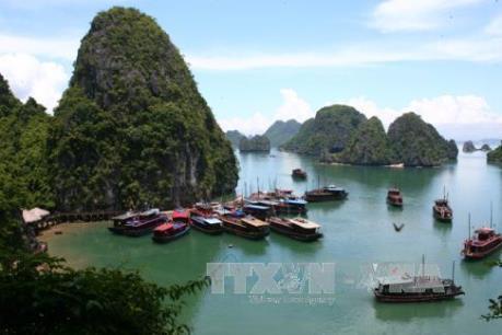 Chấm dứt hoạt động đối với  5 tàu du lịch trên Vịnh Hạ Long