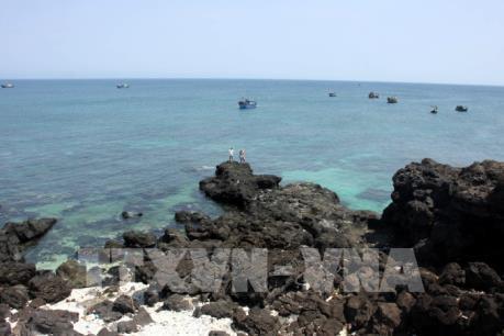 Thành lập Khu bảo tồn biển Lý Sơn, Quảng Ngãi