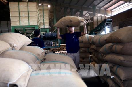 Sớm tháo gỡ những bất cập trong kinh doanh gạo xuất khẩu