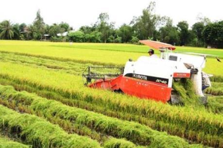 Dự án VnSAT thúc đẩy sự hình thành các tổ chức nông dân