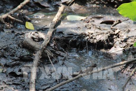 """12 """"điểm nóng"""" gây ô nhiễm môi trường tại Đồng Nai"""