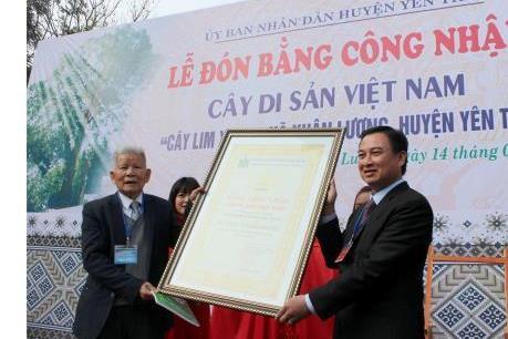 """Bộ Văn hóa, Thể thao và Du lịch 'tuýt còi"""" việc xét tặng danh hiệu tràn lan"""