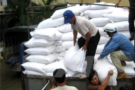 Quý 1/2017: Hơn 92% lượng gạo xuất khẩu là hợp đồng thương mại