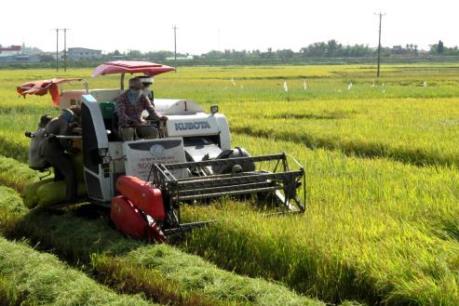 Sắp có hướng dẫn cho vay gói tín dụng nông nghiệp công nghệ cao