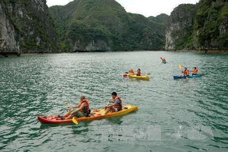 Dịch vụ chèo thuyền Kayak trên Vịnh Hạ Long sẽ tiếp tục được hoạt động?
