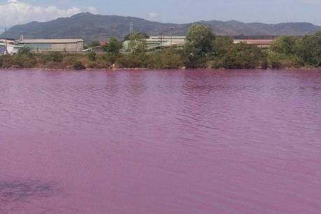 Đã tìm ra nguyên nhân hồ nước ở Bà Rịa-Vũng Tàu bất ngờ đổi thành màu hồng tím