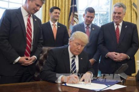 14 bang của Mỹ yêu cầu khôi phục sắc lệnh hạn chế nhập cảnh