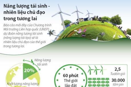 Năng lượng tái sinh sẽ là nhiên liệu chủ đạo trong tương lai