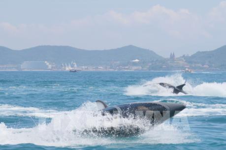 Ra mắt khu giải trí, thể thao biển mới trên vịnh Nha Trang