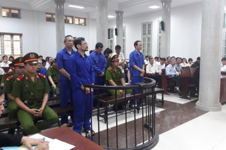 Phạt tù 11 bị cáo trong vụ lập khống dự án trồng rừng