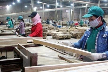 Xuất khẩu gỗ tăng cao nhờ mặt hàng mới và thị trường mới