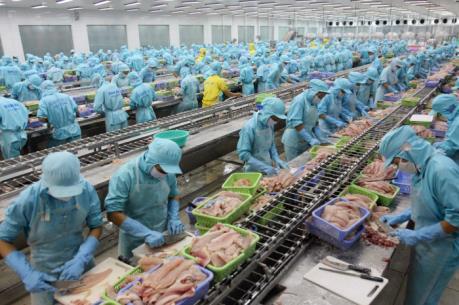 Những điều kiện mới nhất về xuất khẩu sản phẩm cá tra