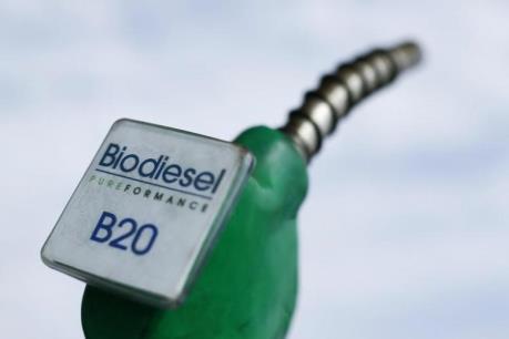 Giới đầu tư chỉ trích chính sách của EU về nhiên liệu sinh học