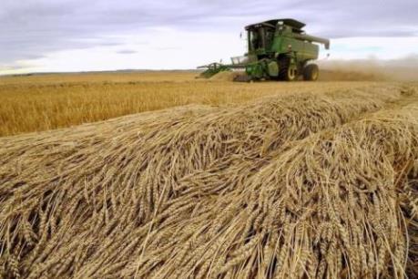 """Canada với tham vọng trở thành """"Thung lũng Silicon"""" về nông nghiệp"""