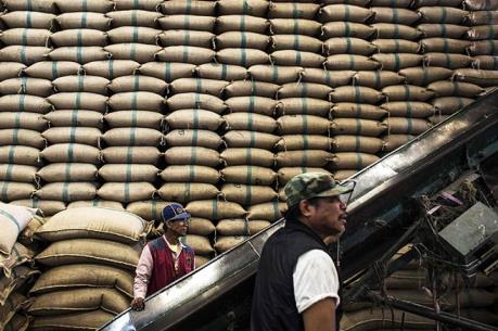 Thái Lan tiếp tục đấu thầu bán gạo dự trữ