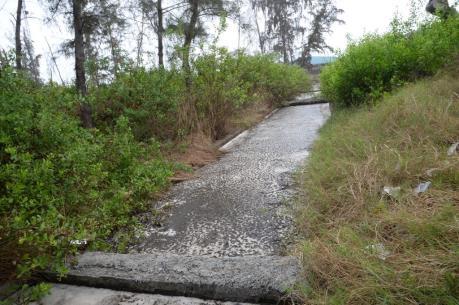 Khánh Hòa: Xử phạt Nhà máy đường vì gây ô nhiễm môi trường