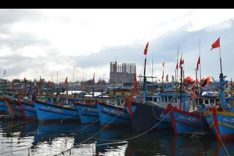 Nhanh chóng làm rõ nét vai trò của các cảng cá