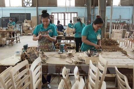 """Doanh nghiệp Việt đồng loạt nói """"không"""" với gỗ bất hợp pháp"""