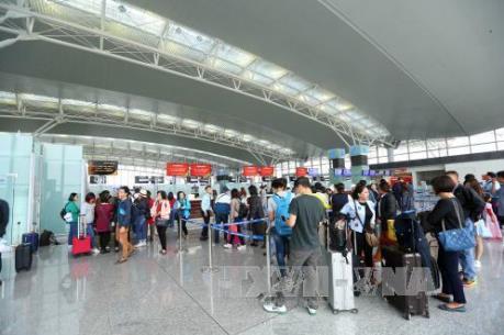 Cục Hàng không nói gì về việc Hãng hàng không Tre Việt nộp đơn xin cấp phép