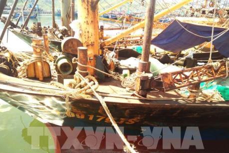 Thông tin về việc bồi thường cho ngư dân có tàu vỏ thép bị hư hỏng tại Bình Định