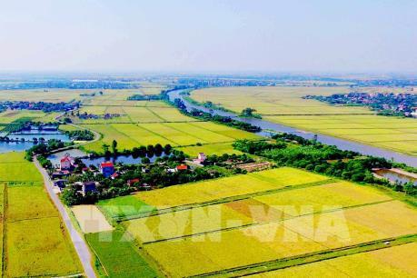 Ứng phó bão số 10: Công điện chỉ đạo sản xuất nông nghiệp