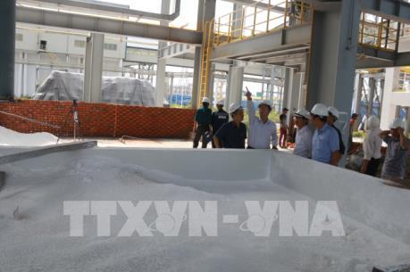 Yêu cầu Công ty Nhôm Đắk Nông khắc phục triệt để sự cố phát tán bột alumin