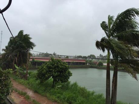 Ứng phó với bão số 2: Hưng Yên hạn chế thấp nhất thiệt hại do mưa bão