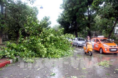 EVN tiếp tục khắc phục hậu quả bão số 2