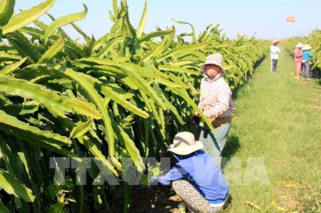 Kế hoạch phát triển ngành nông nghiệp năm 2018 tập trung vào lĩnh vực nào?
