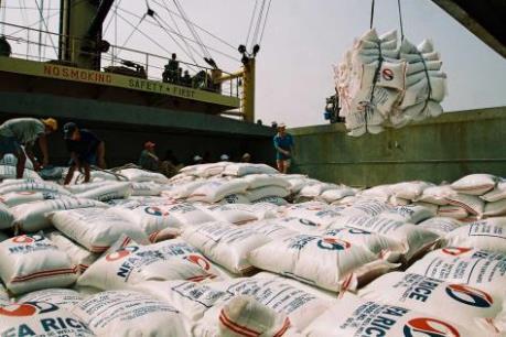 Vẫn còn dư địa cho hạt gạo Việt Nam vào Singapore