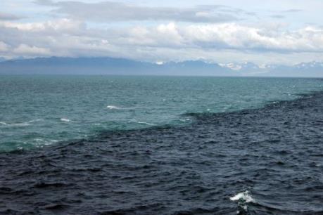 Khoảng 200 lít dầu tràn ra Vịnh Hạ Long