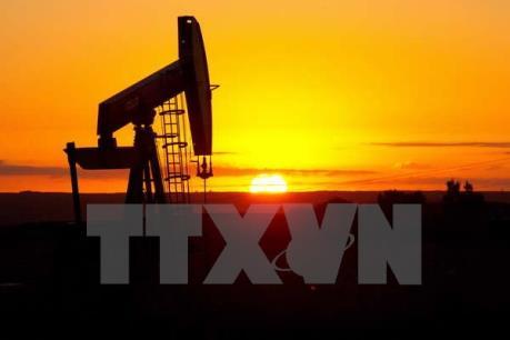 Giá dầu thế giới lấy lại đà trong phiên cuối tuần
