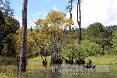 Thanh tra tỉnh Lâm Đồng kết luận có nhiều sai phạm tại Khu Du lịch hồ Tuyền Lâm