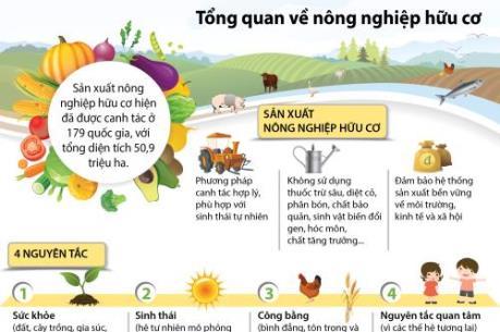 Tổng quan về nông nghiệp hữu cơ