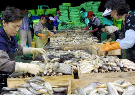 Thời tiết không thuận lợi, giá thực phẩm tại Hàn Quốc tăng mạnh
