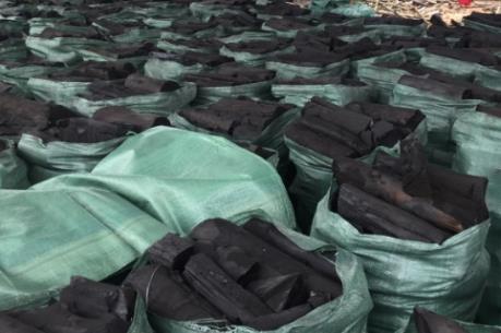 Đắk Lắk xóa bỏ, di dời hơn 100 cơ sở sản xuất than củi