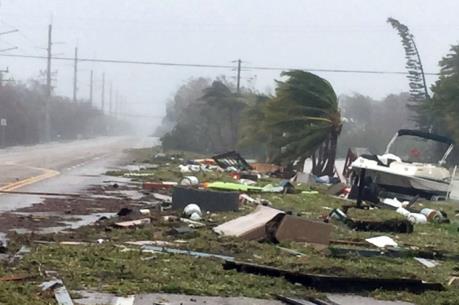Các công ty bảo hiểm Florida giảm bớt thiệt hại khi bão Irma chuyển hướng