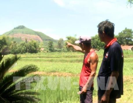 Phát hiện sai phạm lớn trong thu thuế đất nông nghiệp
